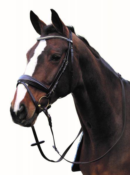 Ergonomische Trense mit Aachner Nasenriemen von Horse Guard